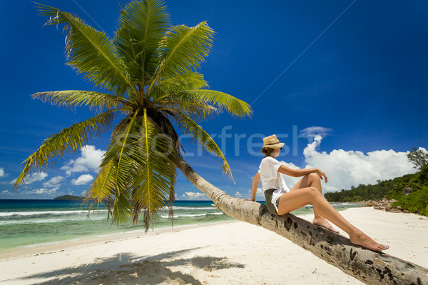 Relaxing On Palmtree Stock photo © iko