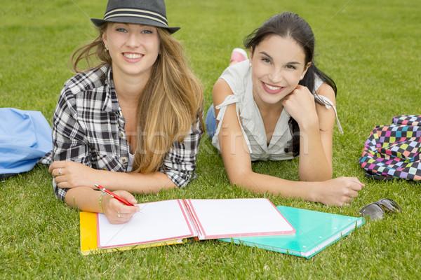 Outdoor study Stock photo © iko