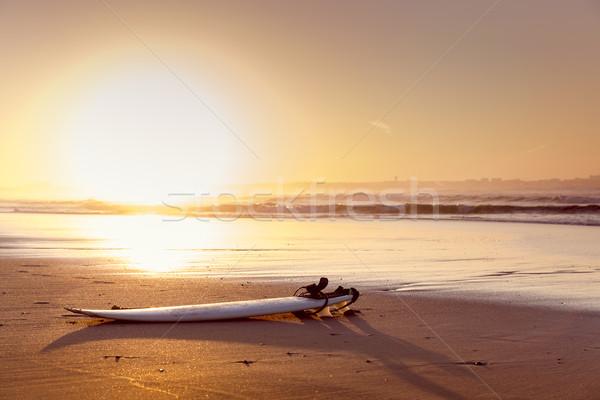 Szörfdeszka gyönyörű tengerpart homok víz sport Stock fotó © iko