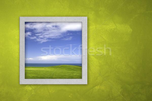 Açmak pencere yeşil duvar gökyüzü ev Stok fotoğraf © iko
