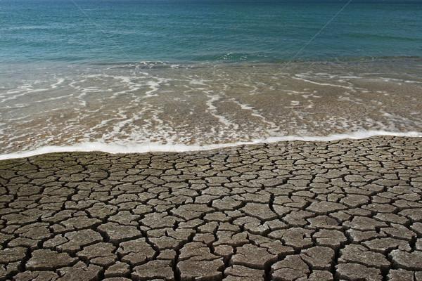 Water VS desert Stock photo © iko