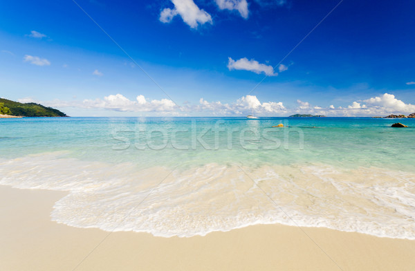 Tropical beach  Stock photo © iko