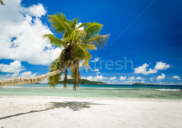 Beautiful beach in Seychelles Stock photo © iko
