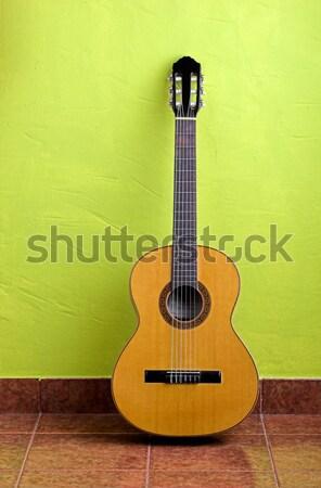 Guitar Stock photo © iko