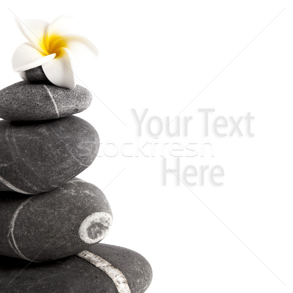 Foto stock: Estância · termal · pedras · flor · isolado · branco · cópia · espaço