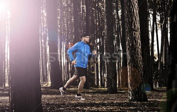 Erdő sportos férfi testmozgás fut test Stock fotó © iko