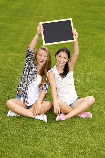 Gelukkig studenten vergadering gras schoolbord Stockfoto © iko