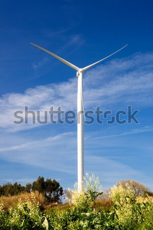 Wind Turbine Stock photo © iko