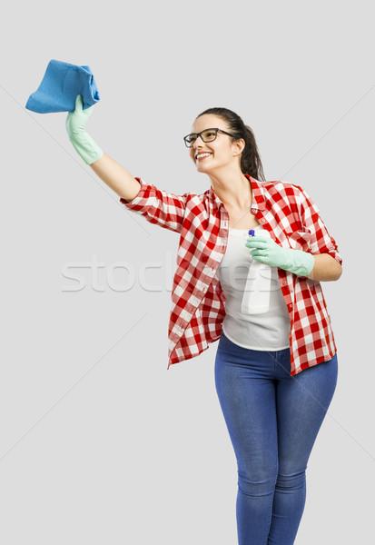 Housekeeping Stock photo © iko