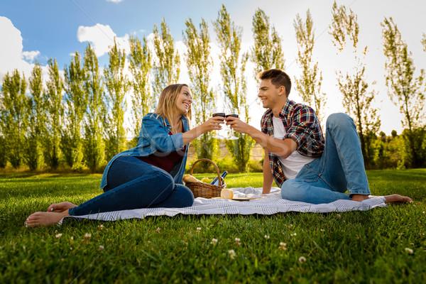 Piquenique tiro belo casal brinde Foto stock © iko