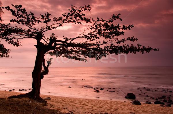 Foto d'archivio: Equatore · spiaggia · bella · tramonto · incredibile · acqua