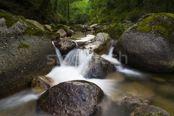 River  Stock photo © iko