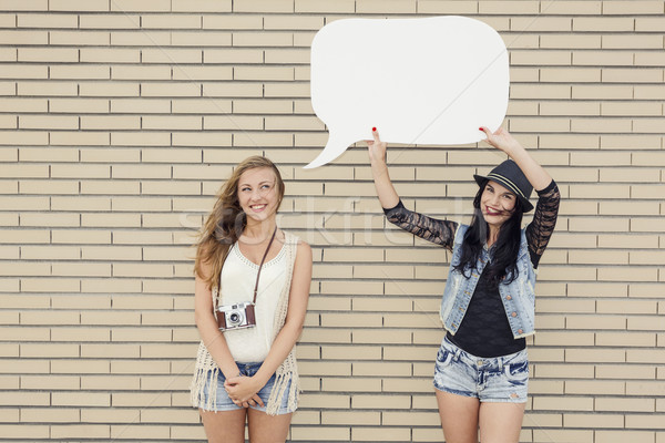Ondeugend meisjes twee mooie jonge vriendinnen Stockfoto © iko
