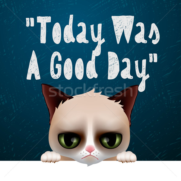 Today was a good day, card with cute grumpy cat Stock photo © ikopylov