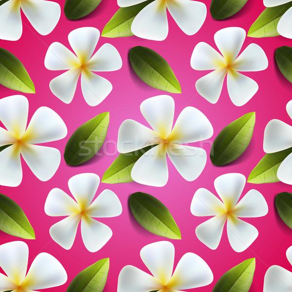 Frangipani flowers seamless pattern Stock photo © ikopylov