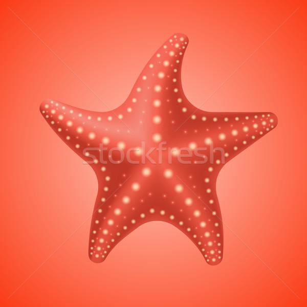 Realista vermelho starfish ícone isolado praia Foto stock © ikopylov