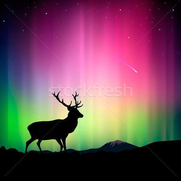 Northern lights with a deer in the foreground Stock photo © ikopylov