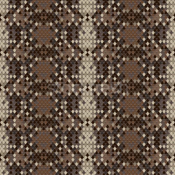 Slang huid reptiel vector eps8 Stockfoto © ikopylov