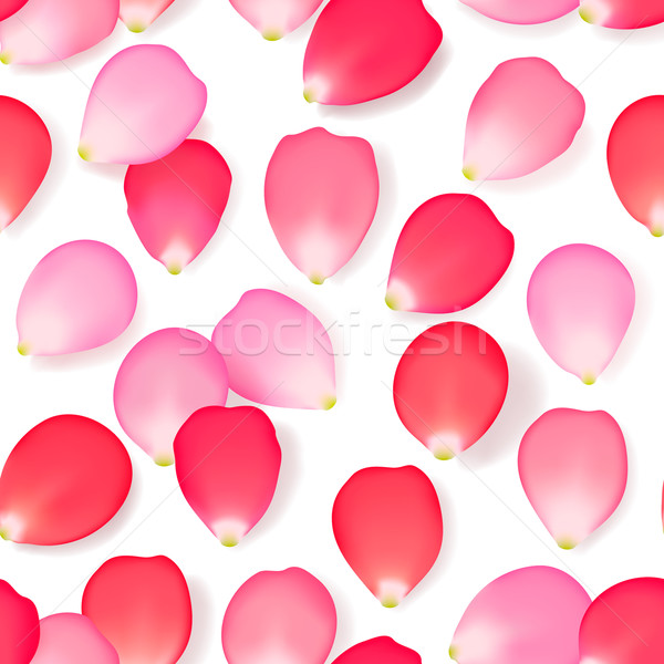 Seamless pattern background with rose flower petals, vector illustration. Stock photo © ikopylov