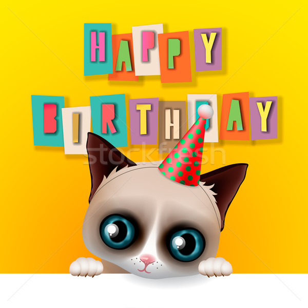 Cute happy birthday card with fun grumpy cat Stock photo © ikopylov