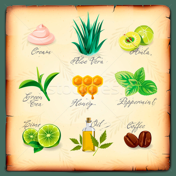 Set of natural cosmetics ingredients Stock photo © ikopylov