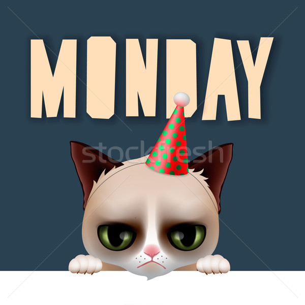 Monday morning with cute grumpy cat Stock photo © ikopylov