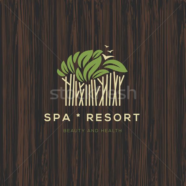 Logotípus fürdő üdülőhely szépség üzlet üzleti logo Stock fotó © ikopylov