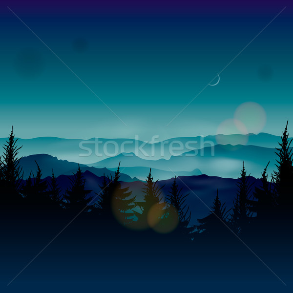 Ködös tűlevelű vektor eps10 illusztráció fa Stock fotó © ikopylov