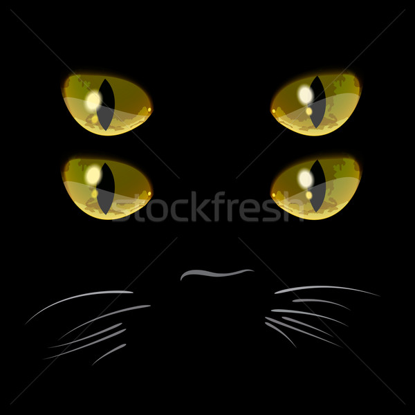 Closeup portrait of black cat with four eyes Stock photo © ikopylov