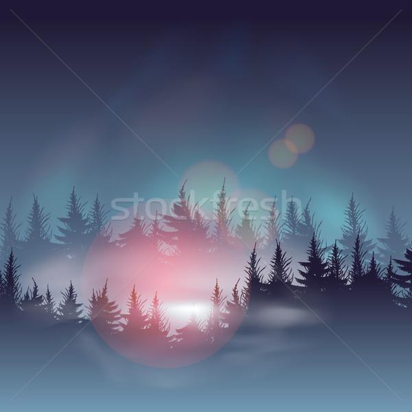 Puslu vektör eps10 örnek gökyüzü Stok fotoğraf © ikopylov