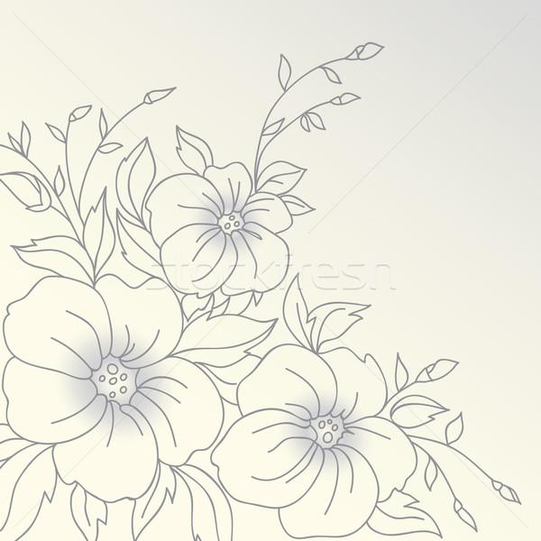 вектора цветы рисованной все форма аннотация Сток-фото © iktash