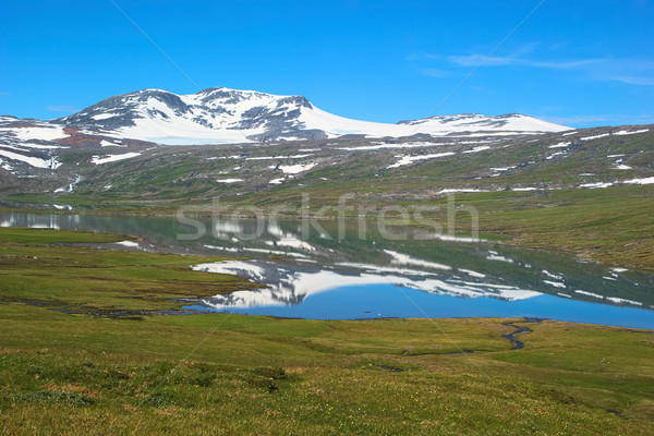 Summer Fjell Landscape in Norway Stock photo © ildi
