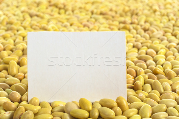 Stock photo: Raw Canary Beans with Blank Card