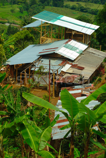 Kahve çiftlik Kolombiya binalar muz bitkiler Stok fotoğraf © ildi
