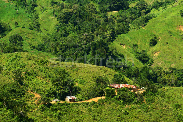 Small Hut in the Sierra Nevada in Northern Colombia Stock photo © ildi