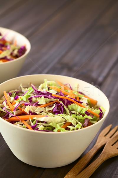 капустный салат свежие Салат красный белый капуста Сток-фото © ildi