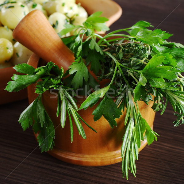 Stock photo: Fresh Herbs in Mortar