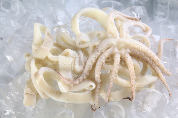 Cut Raw Calamari Rings and Tentacles Stock photo © ildi