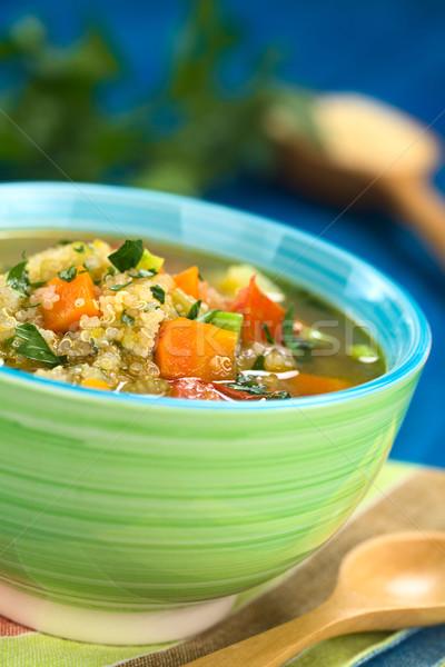 Vegetariano zuppa carota patate porro pomodoro Foto d'archivio © ildi