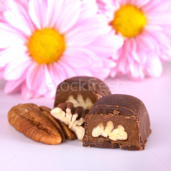 Pecan Nut Truffle Stock photo © ildi