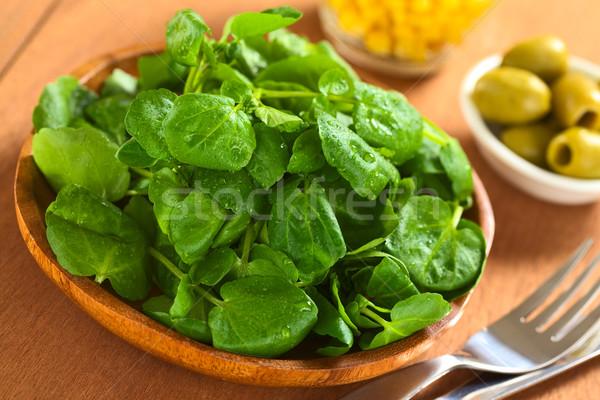 Fresh Watercress Stock photo © ildi
