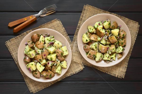 Burgonyasaláta vöröshagyma gyógynövények saláta kabát krumpli Stock fotó © ildi
