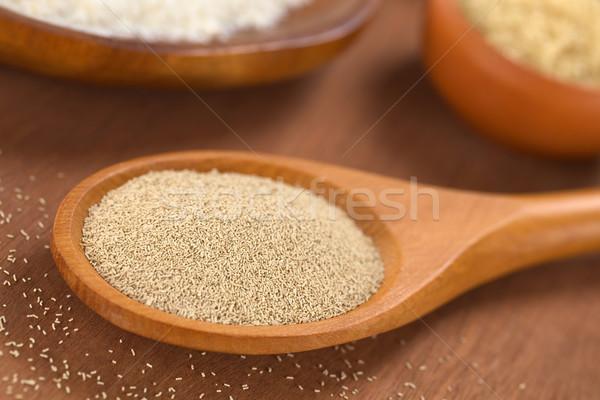 Activo secar levadura ingredientes cuchara de madera Foto stock © ildi