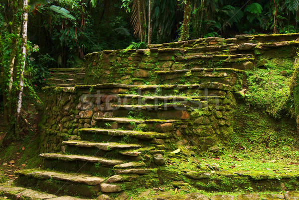 Stone Stairs Leading to a Terrace in Ciudad Perdida, Colombia Stock photo © ildi