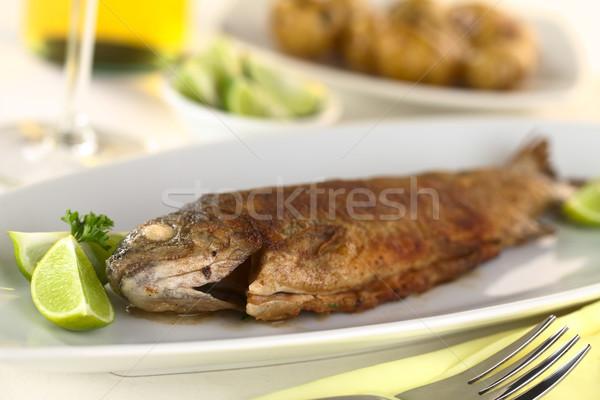 Frito trucha vino blanco patatas atrás atención selectiva Foto stock © ildi
