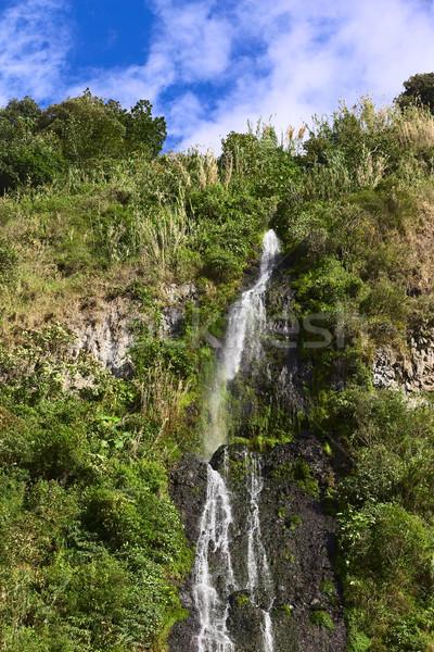 El Cabello del Virgen Waterfall in Banos, Ecuador Stock photo © ildi