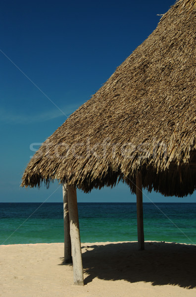 Hut on Beach Stock photo © ildi