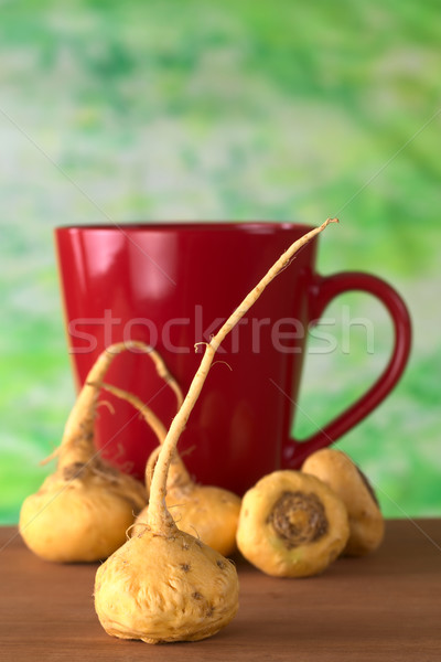 Peruvian Ginseng (Maca) Stock photo © ildi