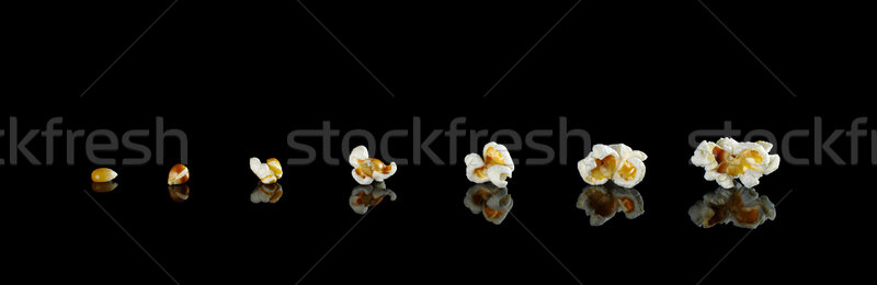 The Evolution of Popcorn Stock photo © ildi