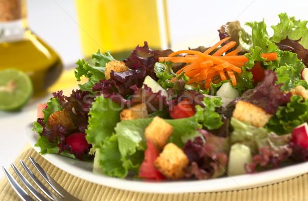 新鮮な サラダ レタス トマト キュウリ 大根 ストックフォト © ildi